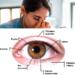 Exercícios de Yoga Para os Olhos