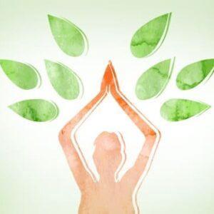 Conheça os Oito Membros da Yoga